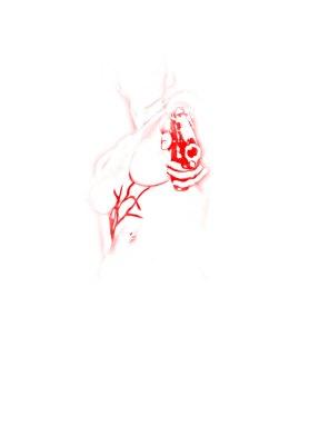 9-el-fin-red